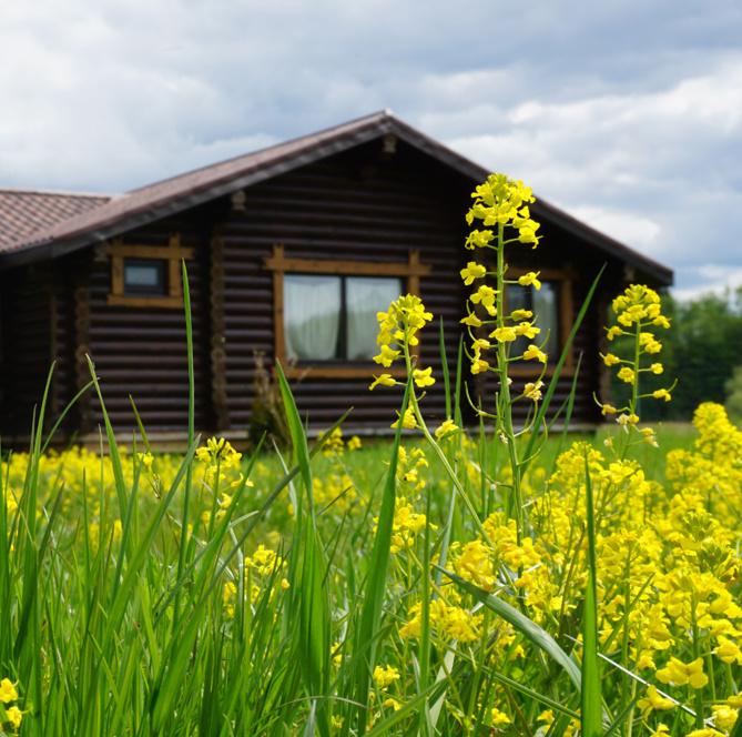 Стоит ли покупать себе загородный дом
